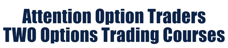 two option trading courses